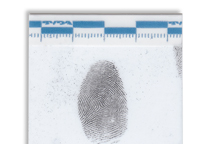Fingerprint lifted with a white Instant lifter