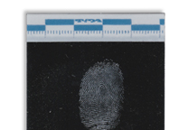 Fingerprint lifted with a black Instant Lifter